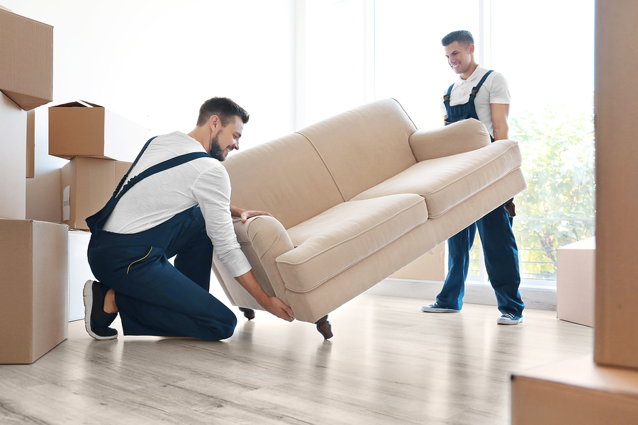 Furniture Delivery Moving Furniture Clearwater Tampa St Petersburg FL
