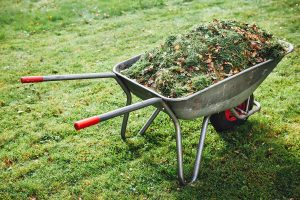 Lanscaping and yard debris cleanup clearwater fl tampa fl st pete fl